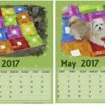Free May 2017 Printable Calendars