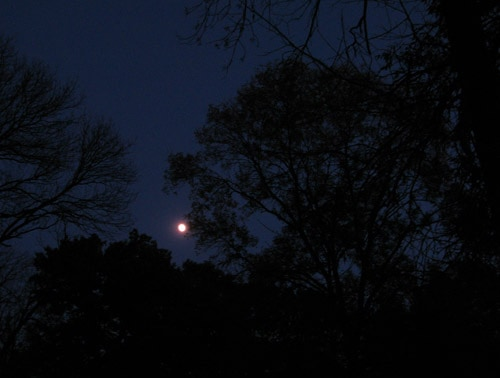 Full moon for the Ghost Walk