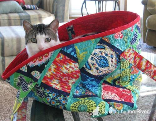 Cat in the tote bag