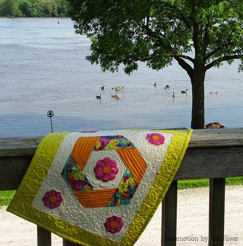 Quilt and geese at Freemotion by the River