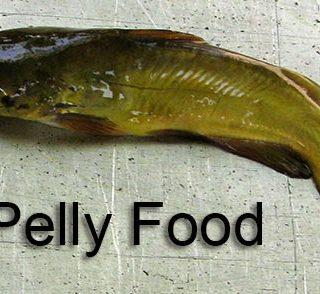 Pelly News!!