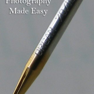 Macro Photography and Needles