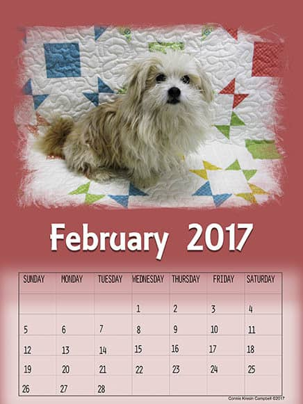Free Printable Feb 2017 Calendar Sadie
