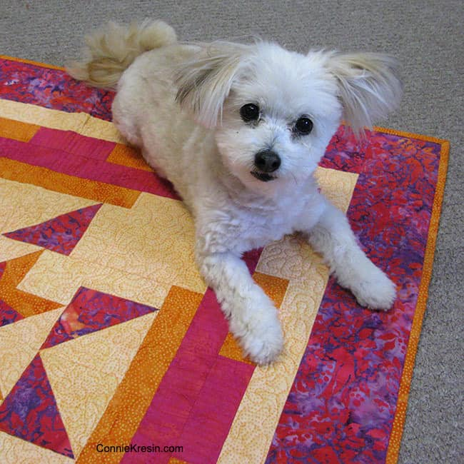 Sadie on Aruba Sunset quilt