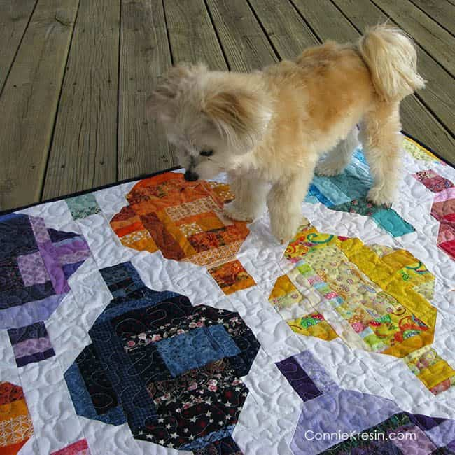 Stash Statement quilt with little Sadie the dog on it