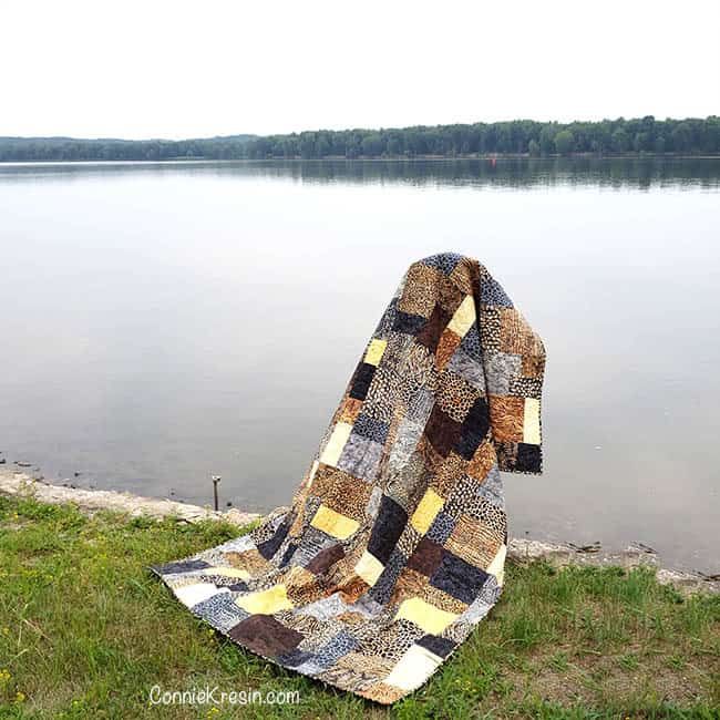 Stacks a beautiful batik quilt made with fat quarters of Wild Things from Island Batik with Sadie hanging on bell by the river