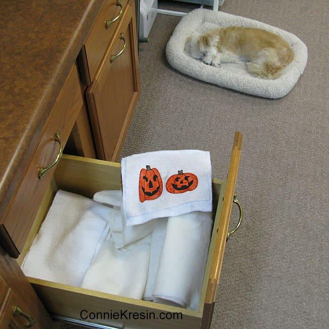 Two pumpkins mug rug batting and Sadie
