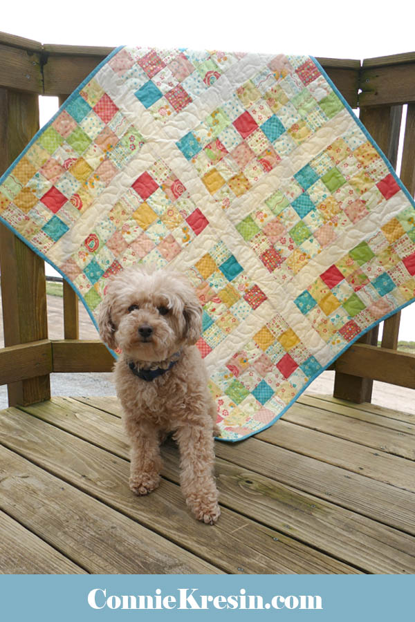 Easy Baby Block Quilt for Beginners tutorial with Mickey the poodle