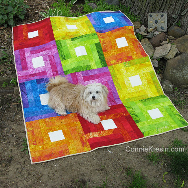 Rainbow rail fence quilt with Sadie the dog on it