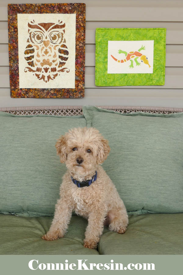 Pets on quilts - Mr Mickey the poodle sitting on deck with the stenciled wall hangings