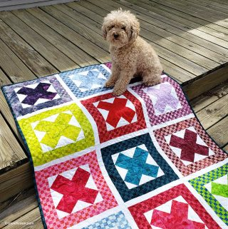 Ready Set Go Baby Quilt with Mickey the dog
