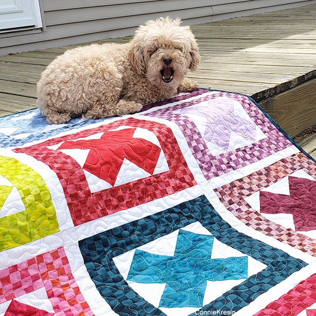 Ready Set Go Baby Quilt with Mickey the dog yawning