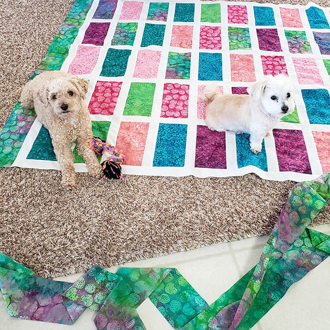 Sparkles quilt with two dogs on it