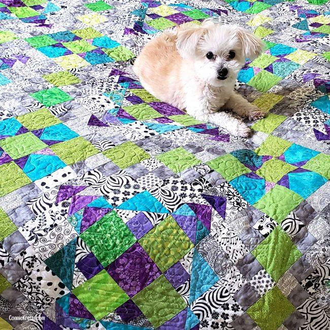 Sadie on the Easy Street Quilt