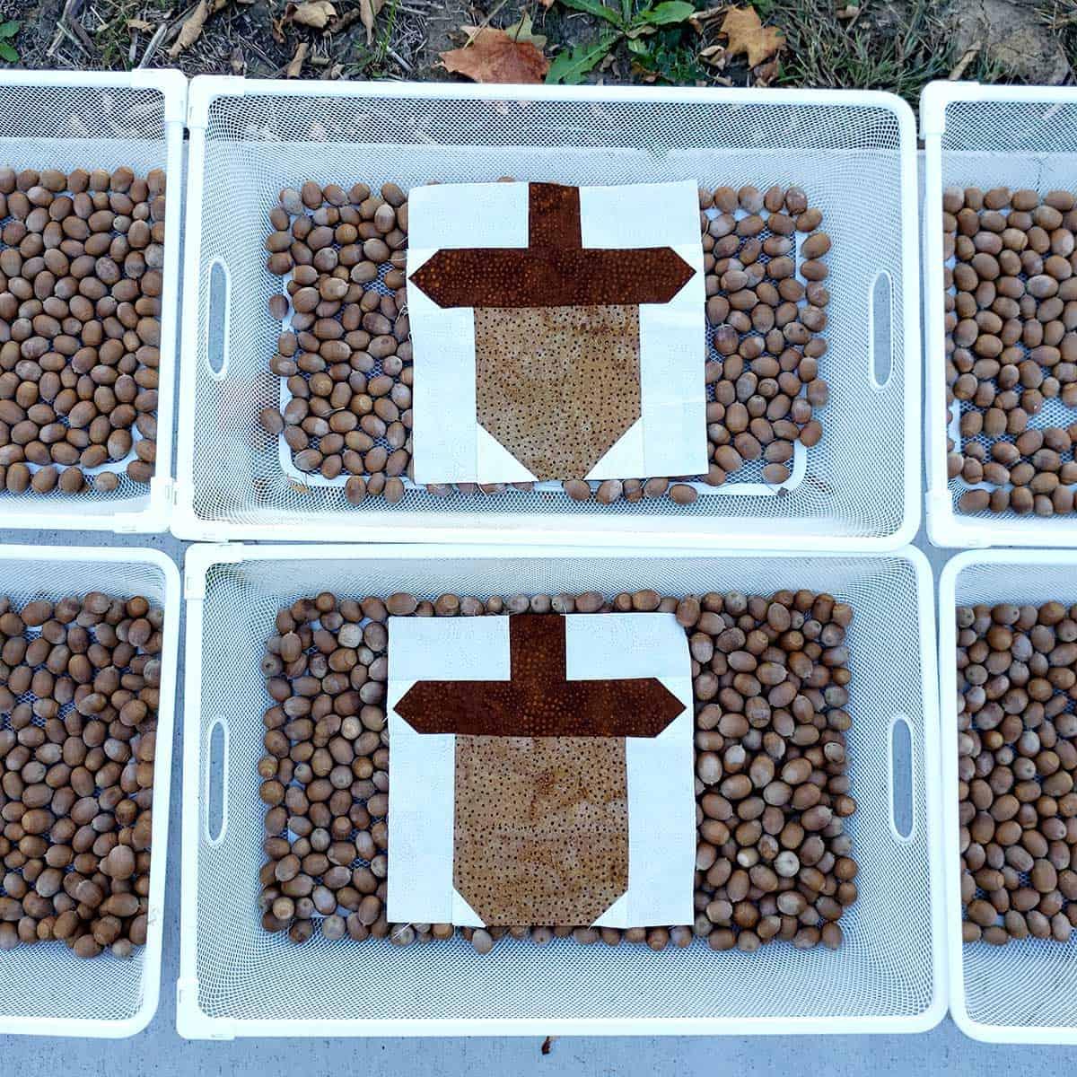 Acorn quilt blocks on real acorns