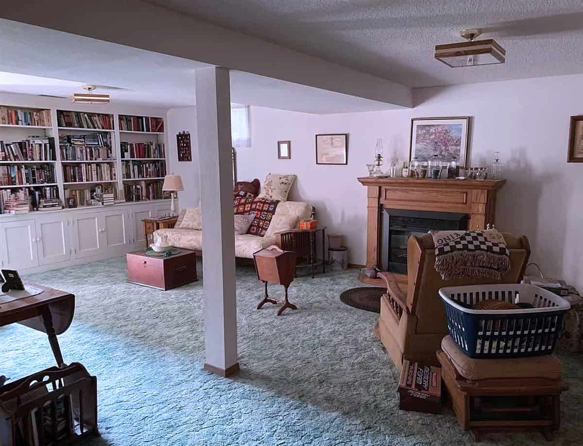 basement with fireplace and bookcases