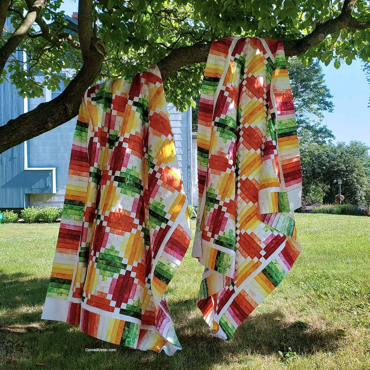 Both Fruit Slices quilt hanging in a tree