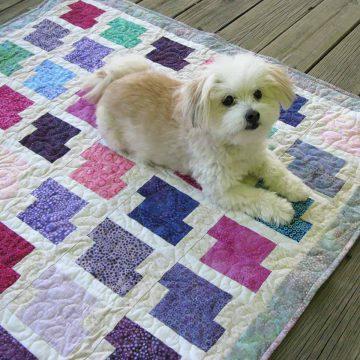 Miss Sadie on quilt
