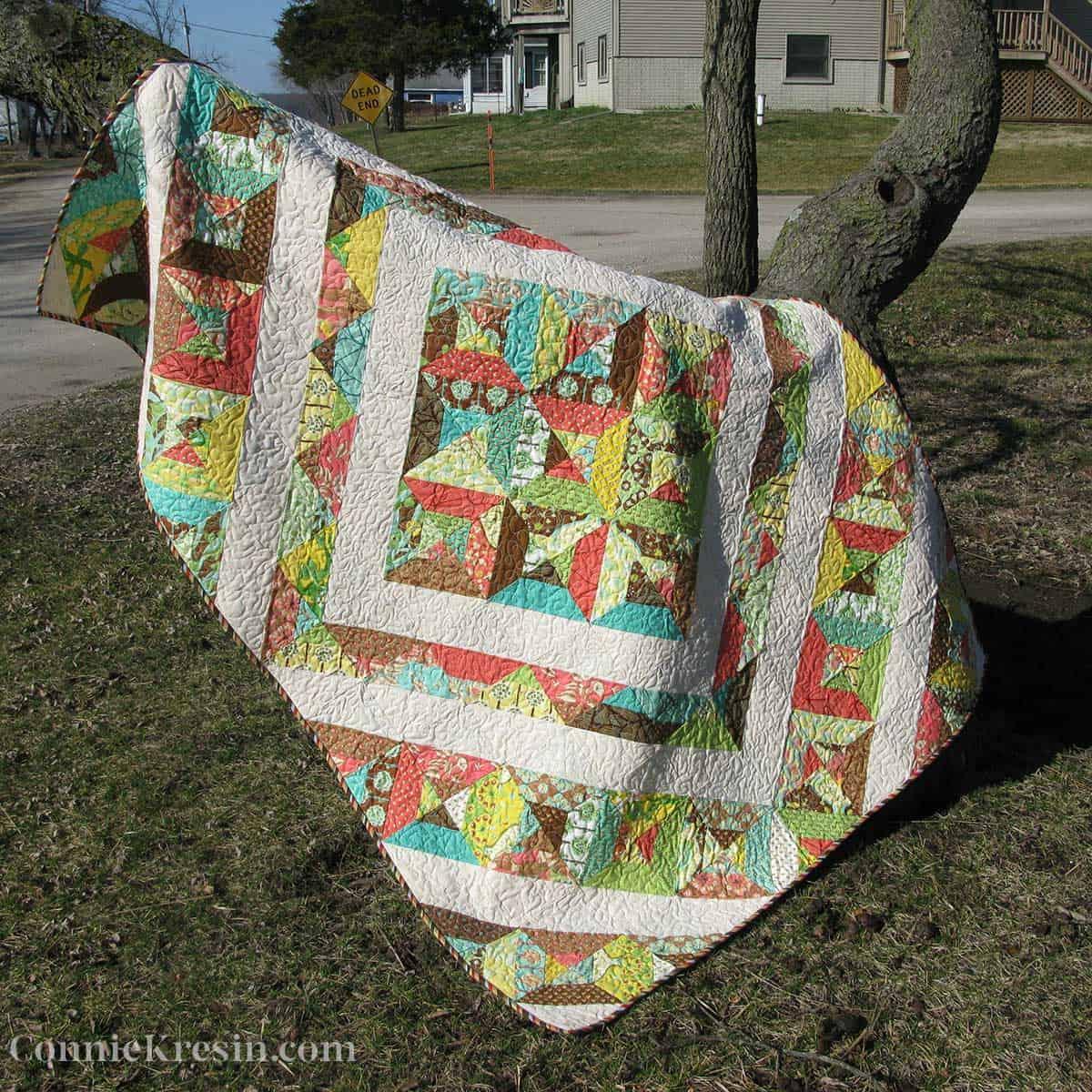 quilt on a tree limb