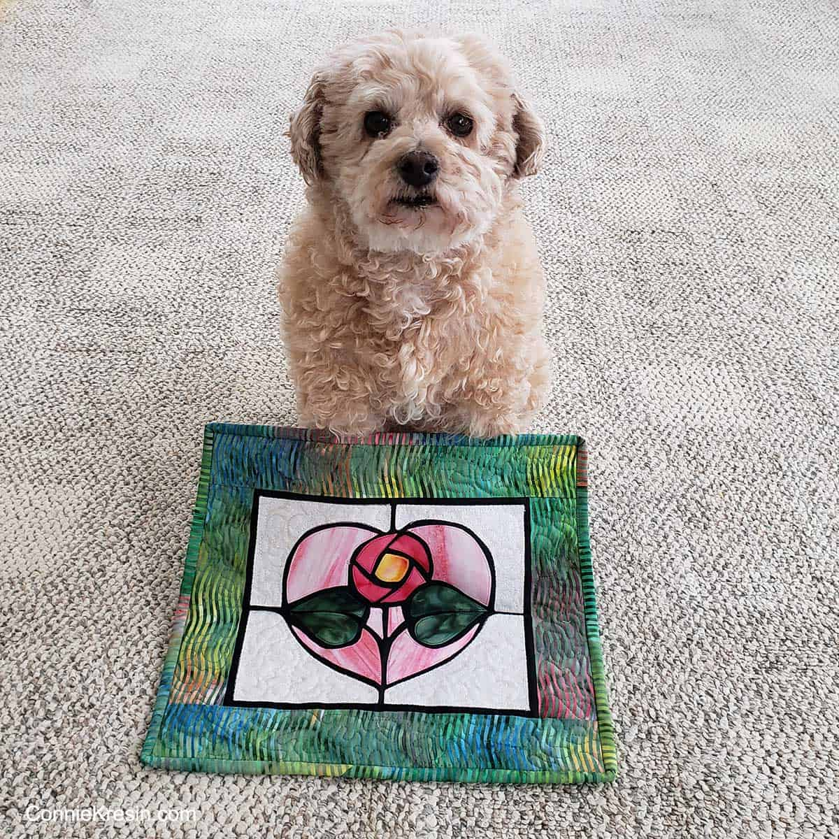 Mr. Mickey the dog and stained glass quilt