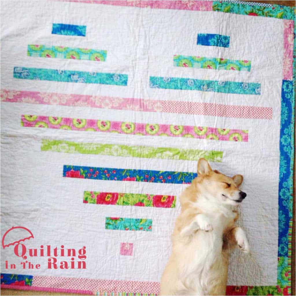 Summer Love quilt with dog