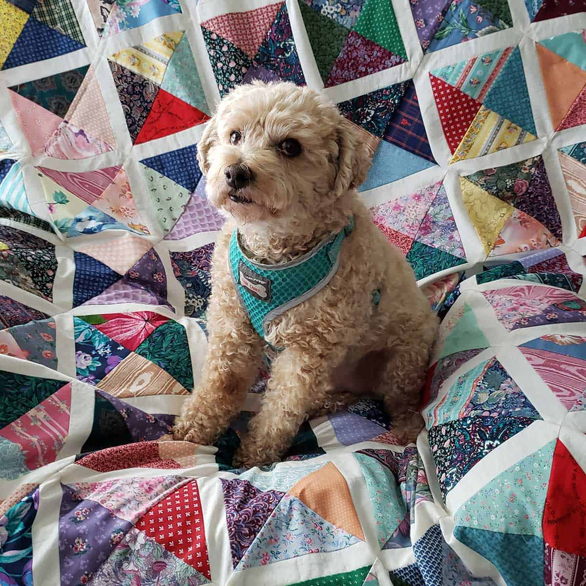 Mr. Mickey on the quilt