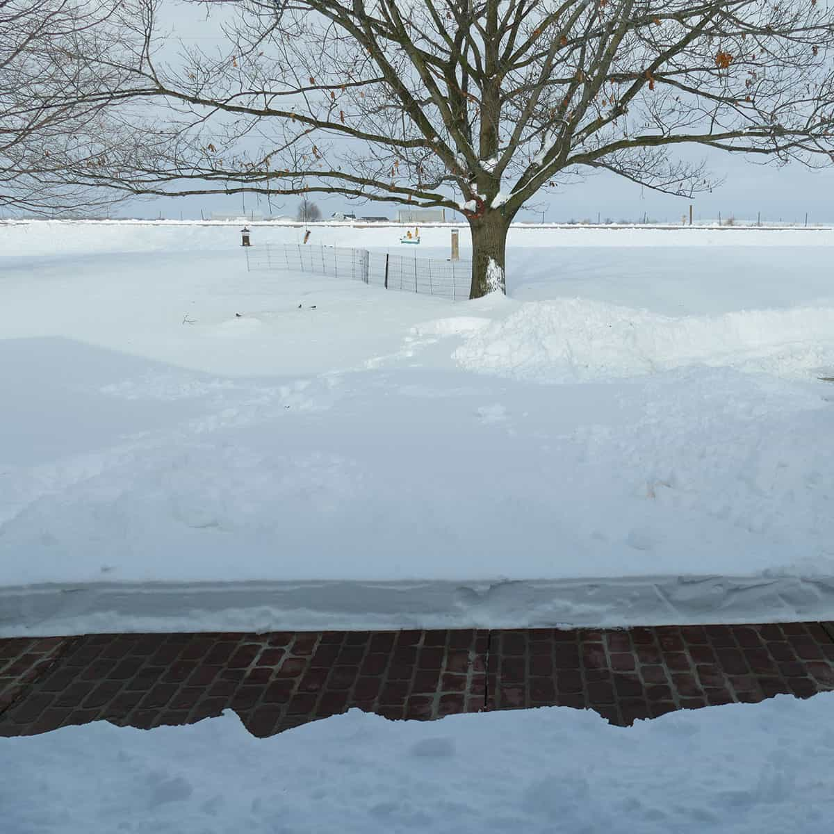 12 inches of snow at our house